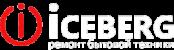 Сервисный центр по ремонту бытовой техники ICEBERG